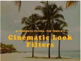 Cinematic Look Filters Template Mockup