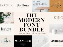 Unique Modern Font Bundle Pack