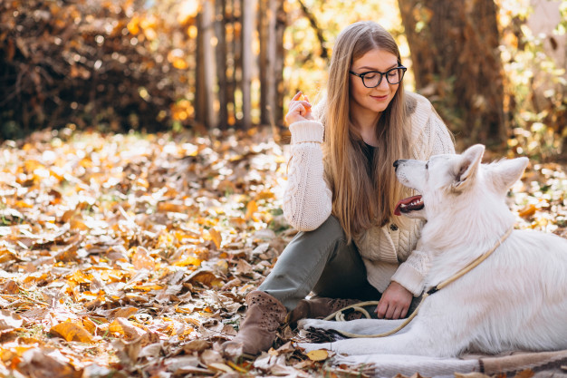 A Dog And Girl Sitting Under A Blanket PSD.