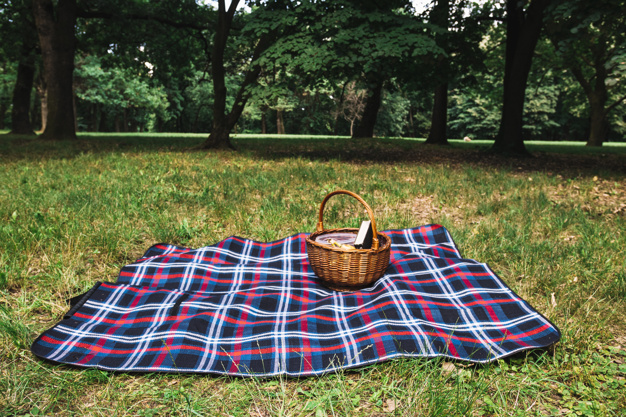 A Picnic Basket Placed On Checked Blanket PSD.