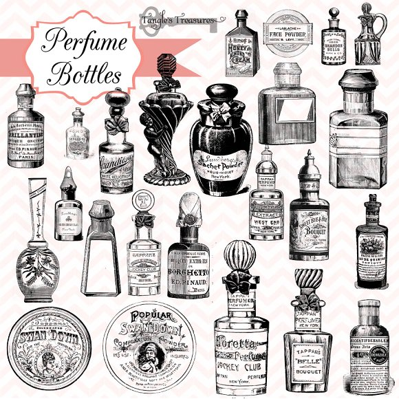 Vintage Perfume Bottle Design Vector: