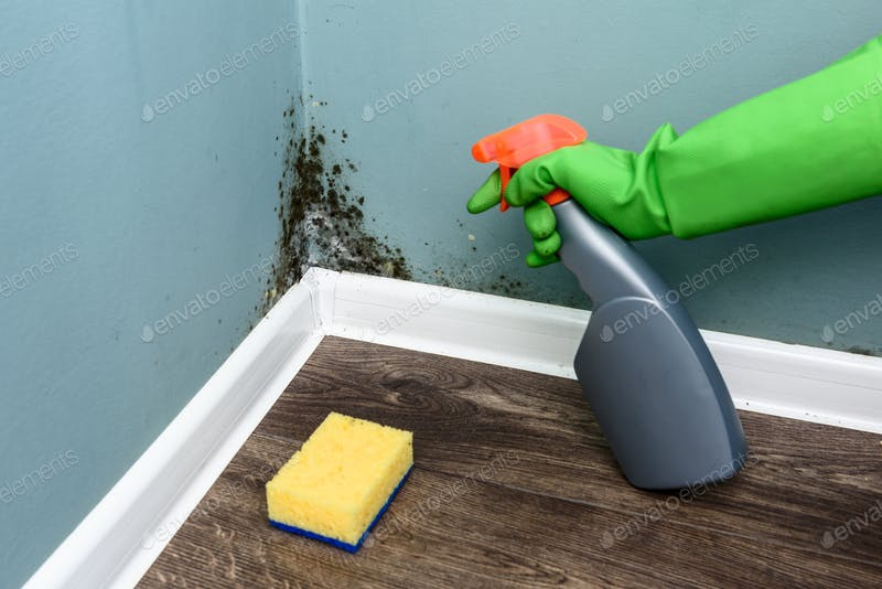 A Hand Spraying Black Mould Wall Mockup