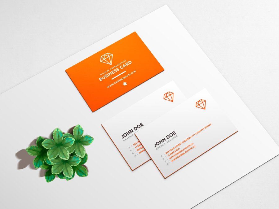 Clean Business Name Card PSD Format