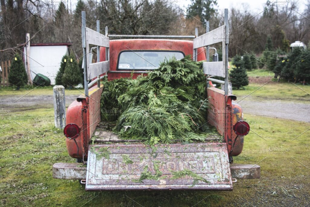 Pine Branches On A Truck Mockup.