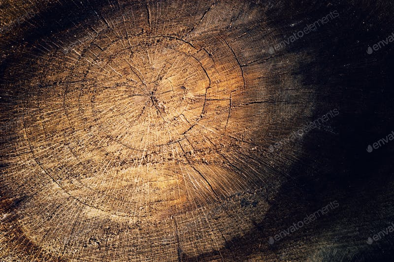 Scene Of A Round Cracked Wood Background PSD Template
