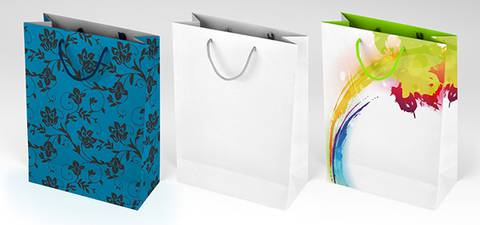 Free PSD Gift Shopping Bag Mockup