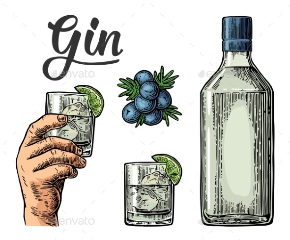Glass and Bottle of Gin and Branch of Juniper