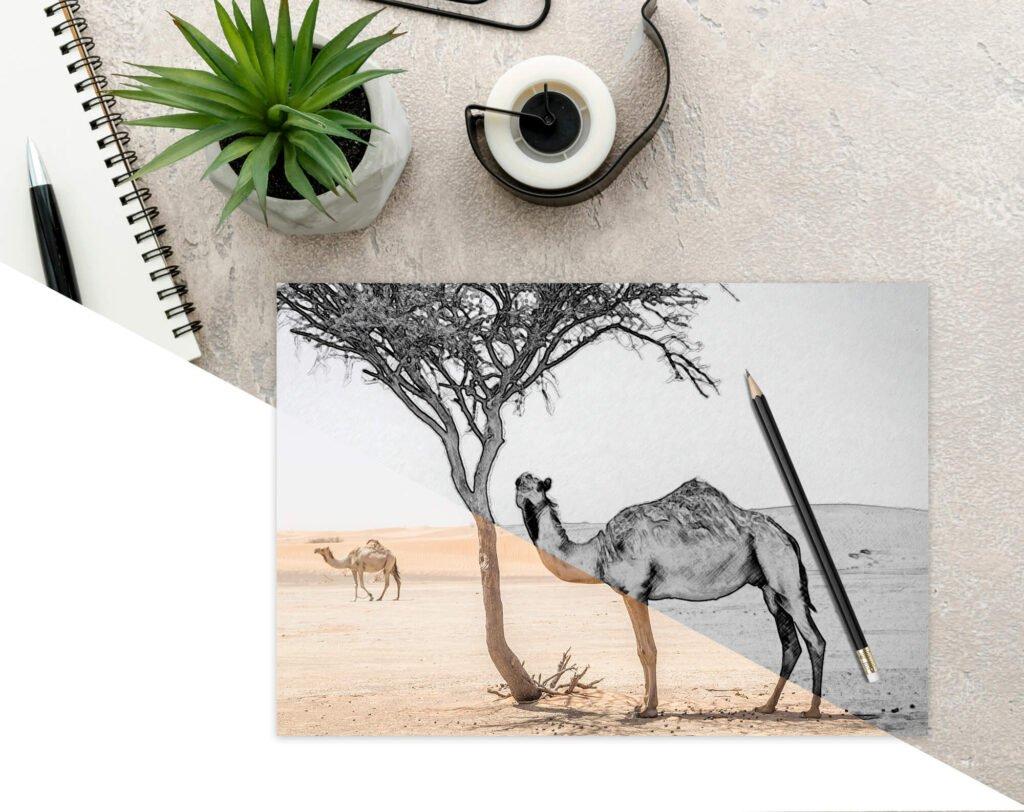 Editable Free Drawing Book Mockup PSD Template