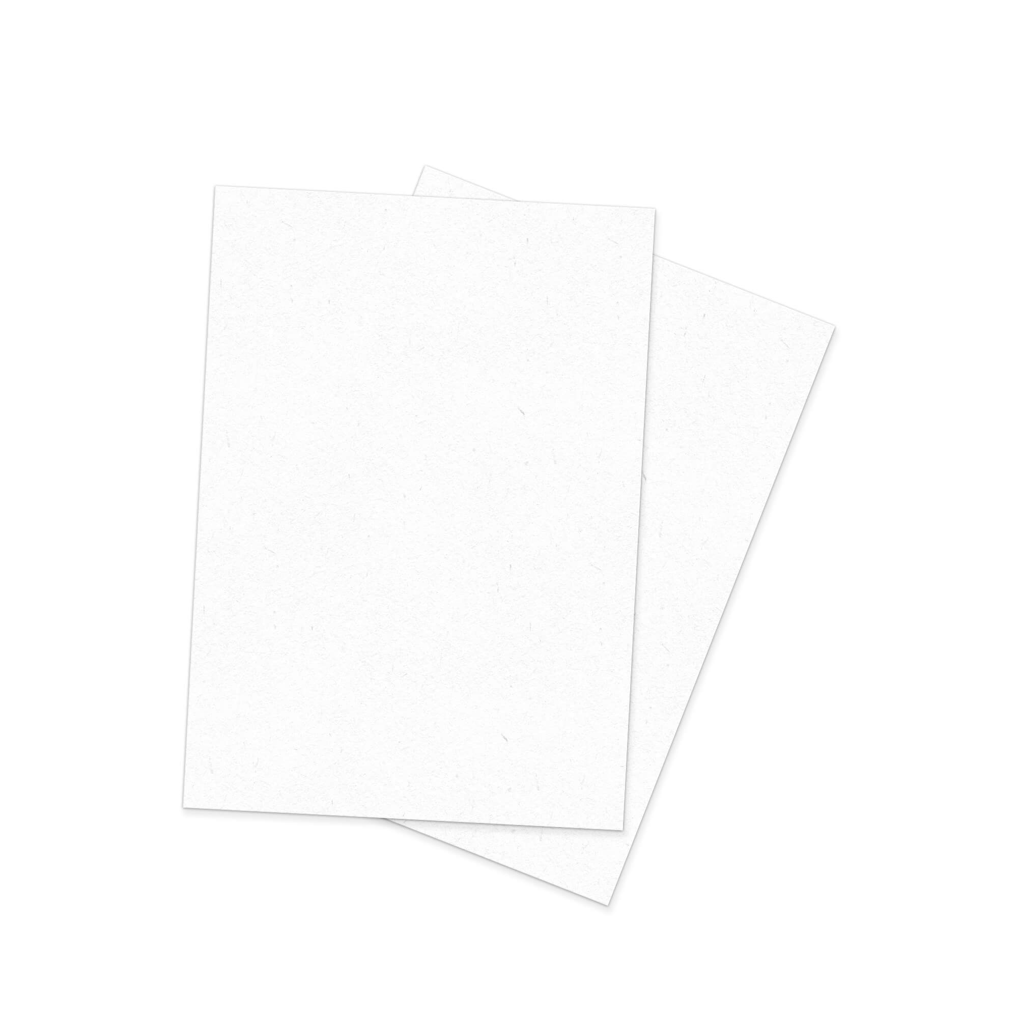 Blank Free A4 Paper Mockup PSD Template
