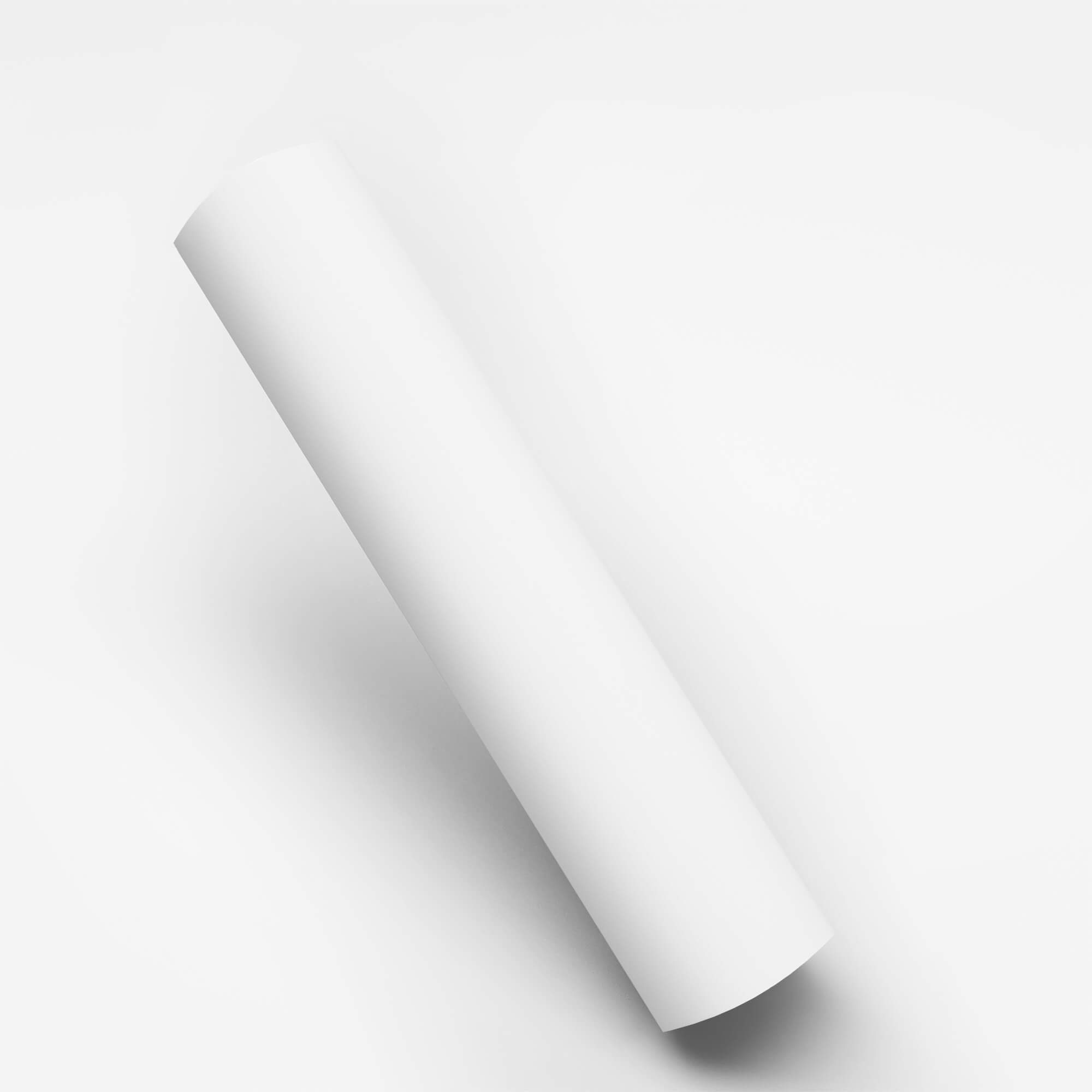 Blank Free Paper Roll Mockup PSD Template