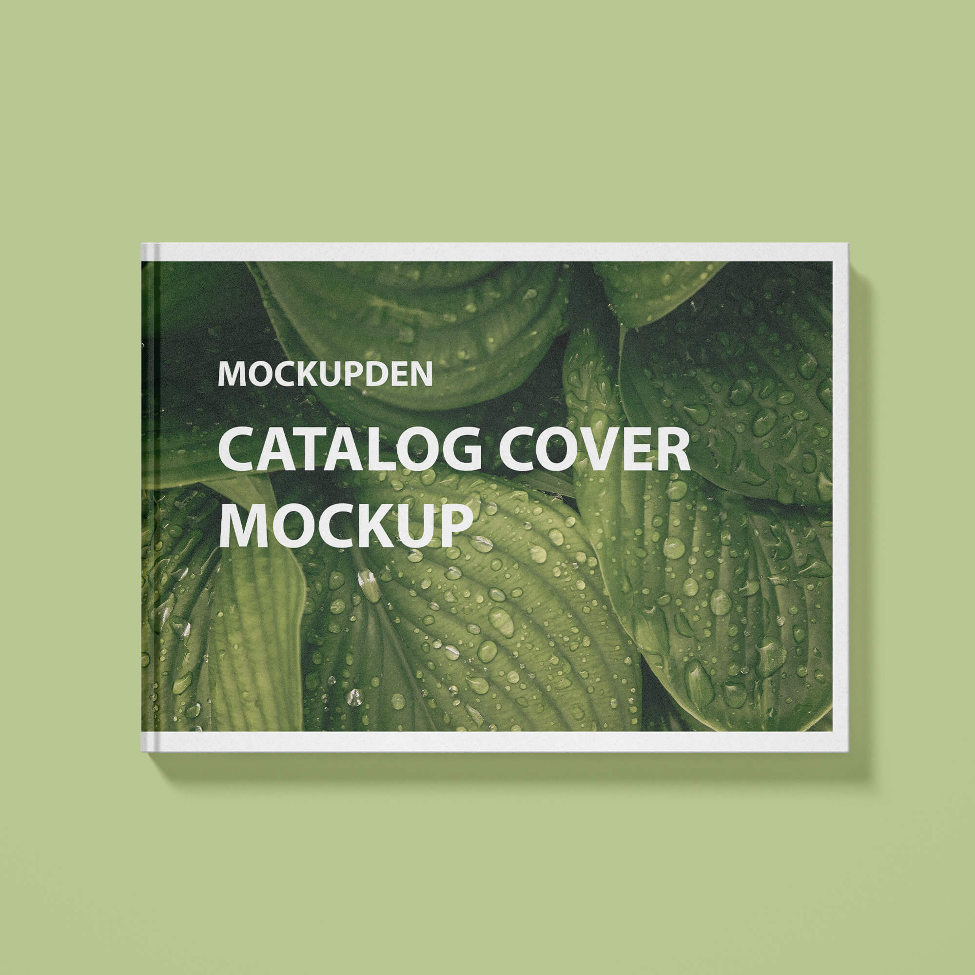Design Free Catalog Cover Mockup PSD Template